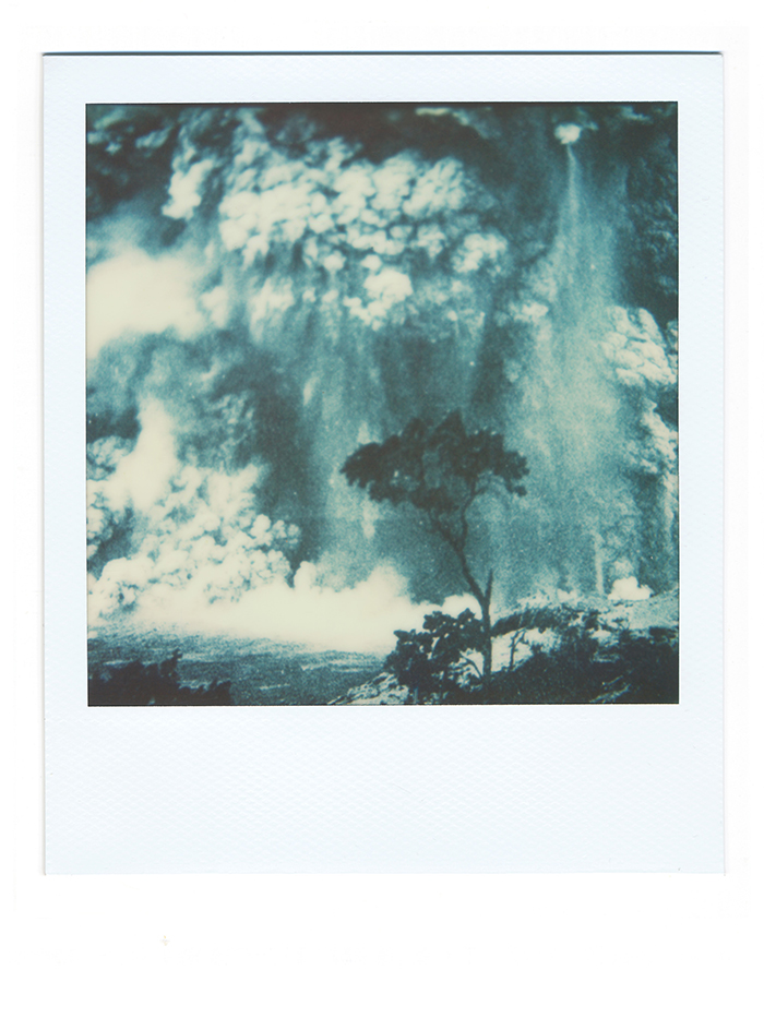 Davor-Sanvincenti-01_Vulcano-Tree_WEB
